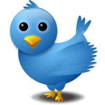 TwitterBird231pxSQx72dpi_3inchSq